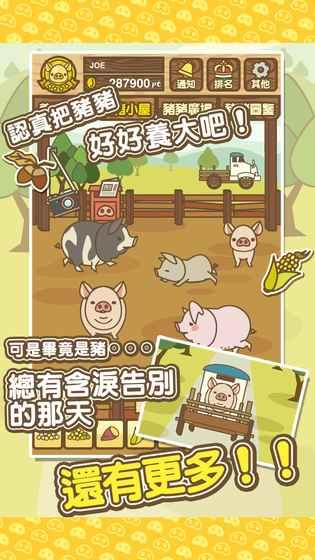 养猪场mix正版(4)