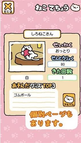 猫咪后院(2)