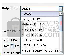 WonderFox SWF to GIF Converter(SWF转GIF工具)