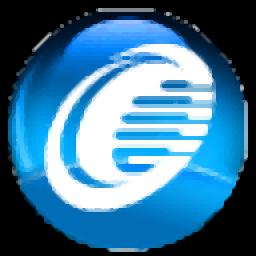增值税发票税控开票软件(金税盘版)