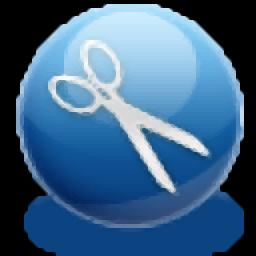 A-PDF Page Cut(PDF切割软件)
