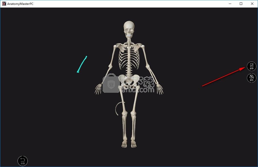 维萨里解剖大师(AnatomyMaster)