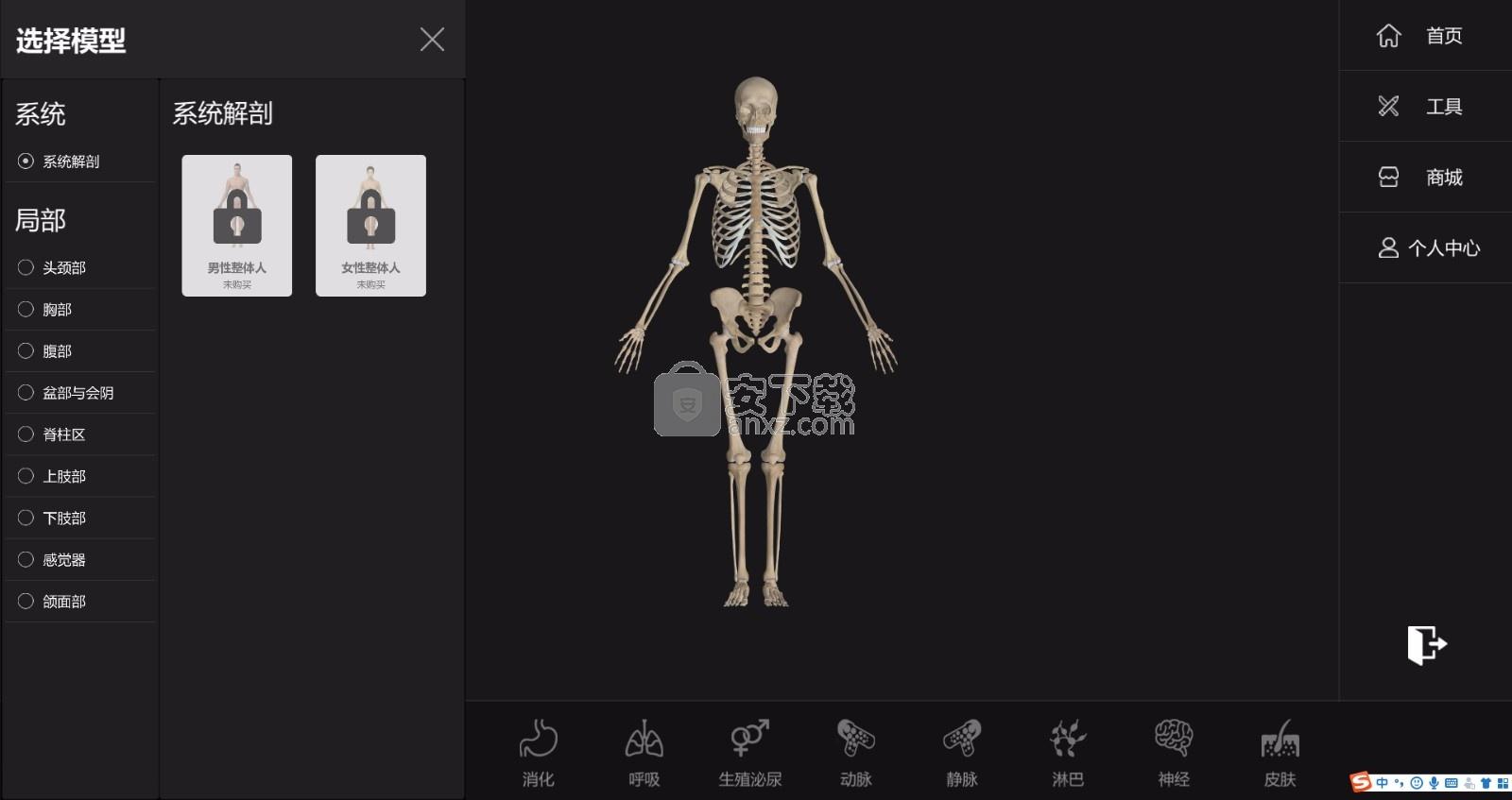 维萨里解剖3d教学个人版