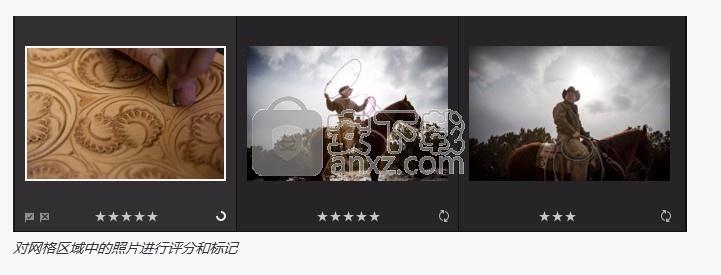 photoshop lightroom cc 2019中文破解版