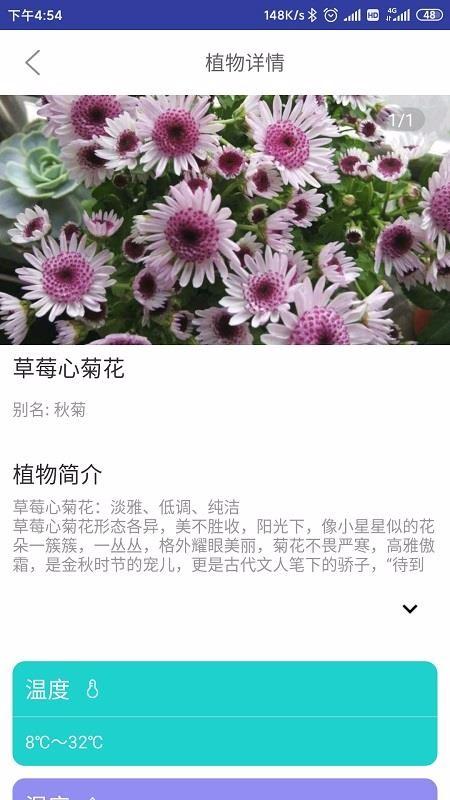 森林甜心(5)